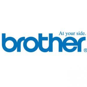 برادر (brother)